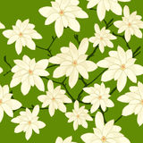 Seamless Pattern with White Magnolia Branch on a Green Background. Royalty Free Stock Image