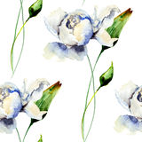 Seamless pattern with White Peony flowers Stock Photography