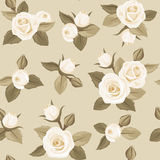 Seamless pattern with white roses on beige. Royalty Free Stock Image