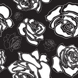 Seamless pattern, white roses on a black backgroun. D, vector illustration stock illustration