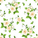 Seamless pattern white roses flowers. Vector illustration. Stock Photography