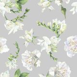 Seamless pattern of white roses and freesia. vector illustration