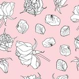 Seamless pattern with white roses on pink. Vector illustration Stock Photography