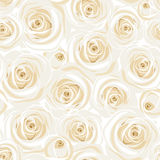 Seamless pattern with white roses. Vector illustration. Royalty Free Stock Photo