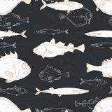 Seamless pattern of white sea fish on black background. Perch, cod, scomber, mackerel, flounder, saira. Vector doodle. Royalty Free Stock Photography