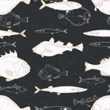 Seamless pattern of white sea fish on black background. Perch, cod, scomber, mackerel, flounder, saira. Vector doodle. royalty free illustration