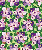 Seamless pattern with white and violet flowers Stock Photo