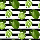 Seamless pattern with whole and sliced limes. royalty free illustration