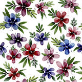 Seamless pattern wiht watercolor flowers Stock Photos
