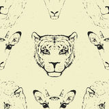 Seamless Pattern of a Wild Animal heads. Stock Image