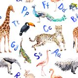 Seamless pattern with wild animals, birds and alphabet letters. Zoo watercolor. Seamless pattern with wild animals and birds and alphabet letters. Zoo watercolor royalty free illustration
