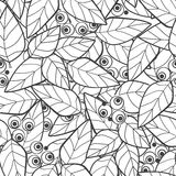 Seamless pattern wild berries branch leaves retro monochrome bac Royalty Free Stock Images