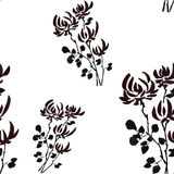 Seamless pattern wild black flowers on the white background. Watercolor. Stock Photography