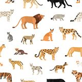 Seamless pattern with wild cats on white background. Backdrop with exotic carnivorous animals of Felidae family. Colorful vector illustration in flat cartoon vector illustration