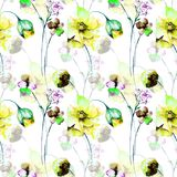 Seamless pattern with wild flowers Royalty Free Stock Images