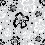 Seamless pattern of wild flowers. Endless floral texture. Floral wallpaper Stock Photography