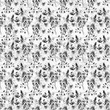 Seamless pattern with wild flowers Royalty Free Stock Photos