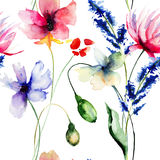 Seamless pattern with wild flowers Stock Images