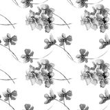 Seamless pattern with wild flowers. Watercolor illustration Royalty Free Stock Photography