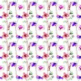 Seamless pattern with wild flowers. Watercolor illustration Royalty Free Stock Photo