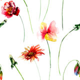 Seamless pattern with wild flowers. Watercolour illustration Royalty Free Stock Photography