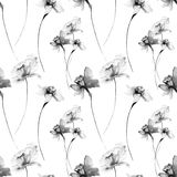 Seamless pattern with wild flowers. Watercolour illustration Royalty Free Stock Image