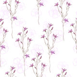 Seamless pattern with wild flowers on white background.  Vector Illustration
