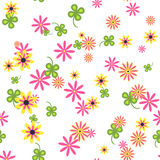 Seamless pattern of wild flowers on a white background. Stock Images