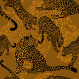 Seamless pattern with wild leopard Royalty Free Stock Photos