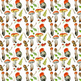 Seamless pattern with wild mushrooms. Hand drawn watercolor painting Royalty Free Stock Images