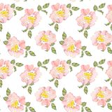 Seamless pattern wild pink roses flower and green leaves. Watercolor floral illustration. Botanical decorative element. Continuous gentle blooming plant pattern vector illustration