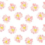 Seamless pattern wild pink roses flower. Watercolor floral illustration. Botanical decorative element. Flower concept. Continuous gentle blooming plant pattern vector illustration