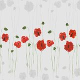 Seamless pattern of red and gray flowers of poppies with green stems on a light gray background. Watercolor. Seamless pattern of wild red and gray flowers of Stock Image