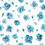 Seamless pattern with wildflower Veronica stock image