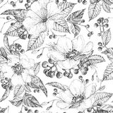 Seamless pattern with wildflowers. Black and white.