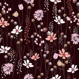 Seamless Pattern wind blow flowers,  Isolated on maroon color. B Royalty Free Stock Image