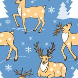 Seamless pattern with winter forest and cute deers. Seamless pattern with winter forest and deers Stock Images