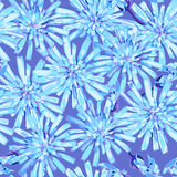 Seamless pattern of winter frozen blue flowers Stock Images