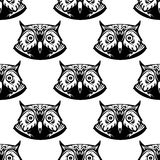 Seamless pattern of wise owl heads Stock Photo
