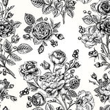 Seamless pattern wit roses. Royalty Free Stock Images