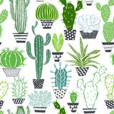 Seamless Pattern With Cactuses And Succulents. Royalty Free Stock Images