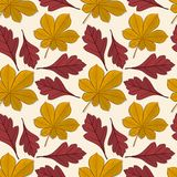 Seamless Pattern With Chestnut And Hawthorn Autumn Leaves. Royalty Free Stock Photo