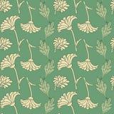 Seamless Pattern With Chrysanthemums Stock Photos