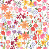 Seamless Pattern With Contour Summer Flowers Royalty Free Stock Photo
