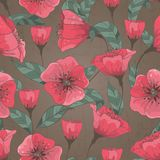 Seamless Pattern With Hand Drawn Flowers Royalty Free Stock Photography