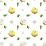 Watercolor pattern of apples vector illustration