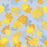 Seamless pattern with yellow autumn leaves. Vector Stock Photo