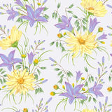 Seamless pattern with yellow chamomile flowers, blue bluebells flowers and oat. Rustic floral background. Vintage vector botanical illustration in watercolor Royalty Free Stock Photo