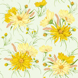 Seamless pattern with yellow chamomile flowers and millet. Rustic floral design Stock Photos