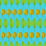 Seamless pattern with yellow and green leaves on a green background Stock Photos